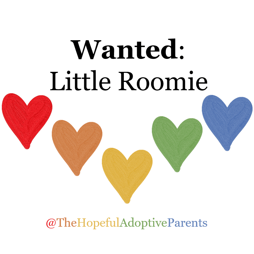 The Hopeful Adoptive Parents Little Roomie